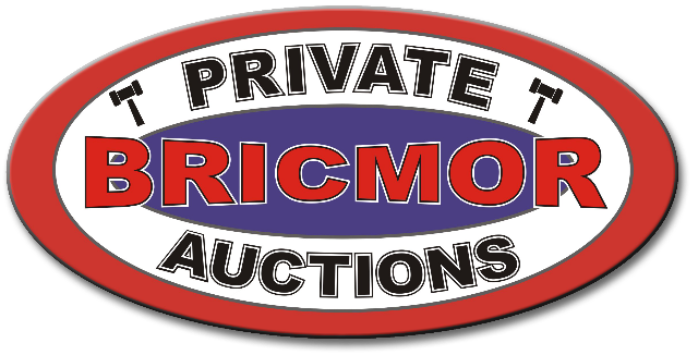 Bricmor Auction Group (Pty) Ltd logo