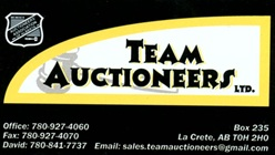 Team Auctioneers LTD logo