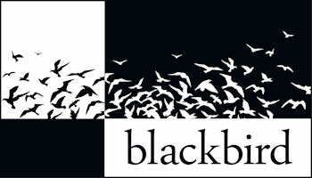 Blackbird Asset Services, LLC logo