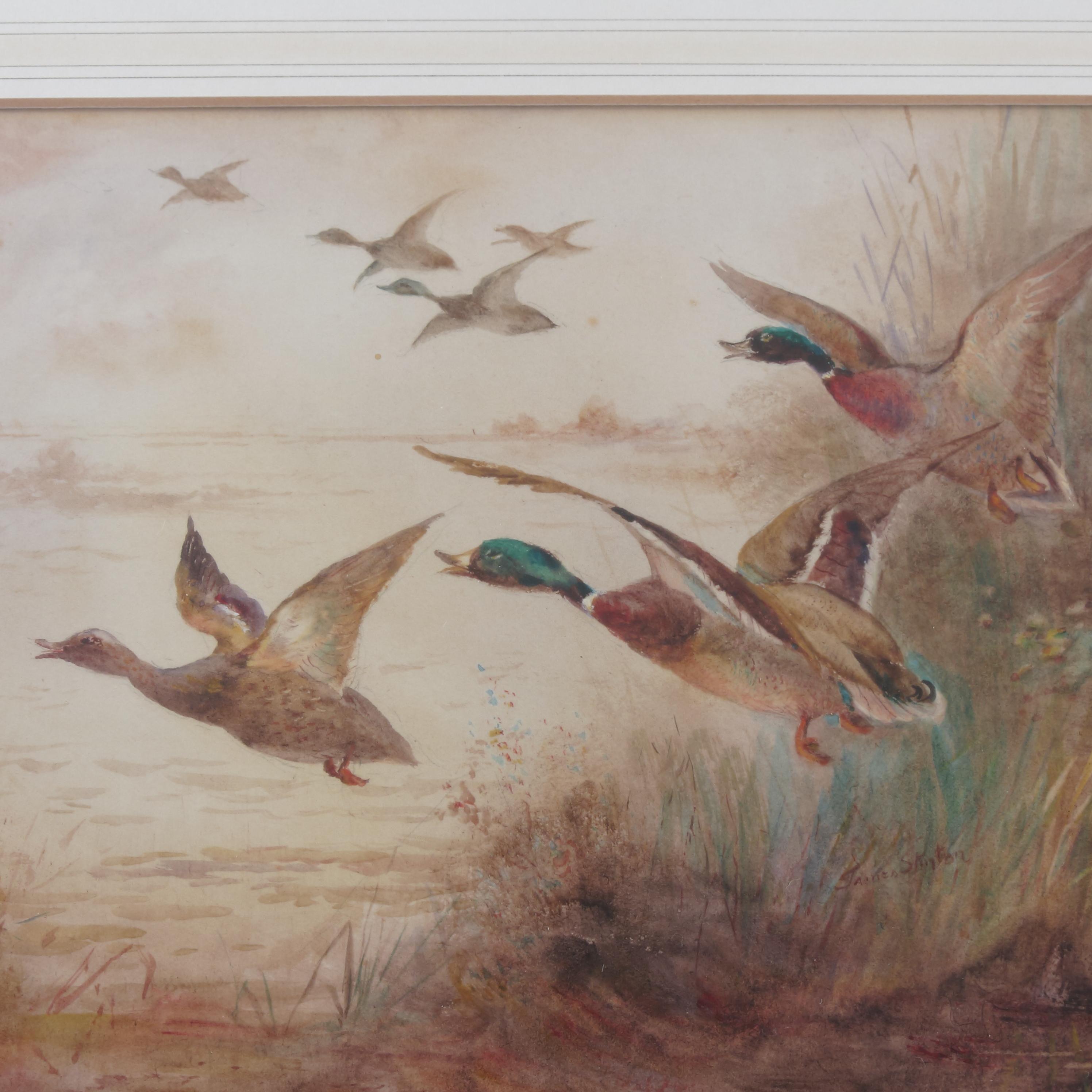 James Stinton, watercolour, mallard ducks in flight, 6.75ins x 9. - Image 2 of 3