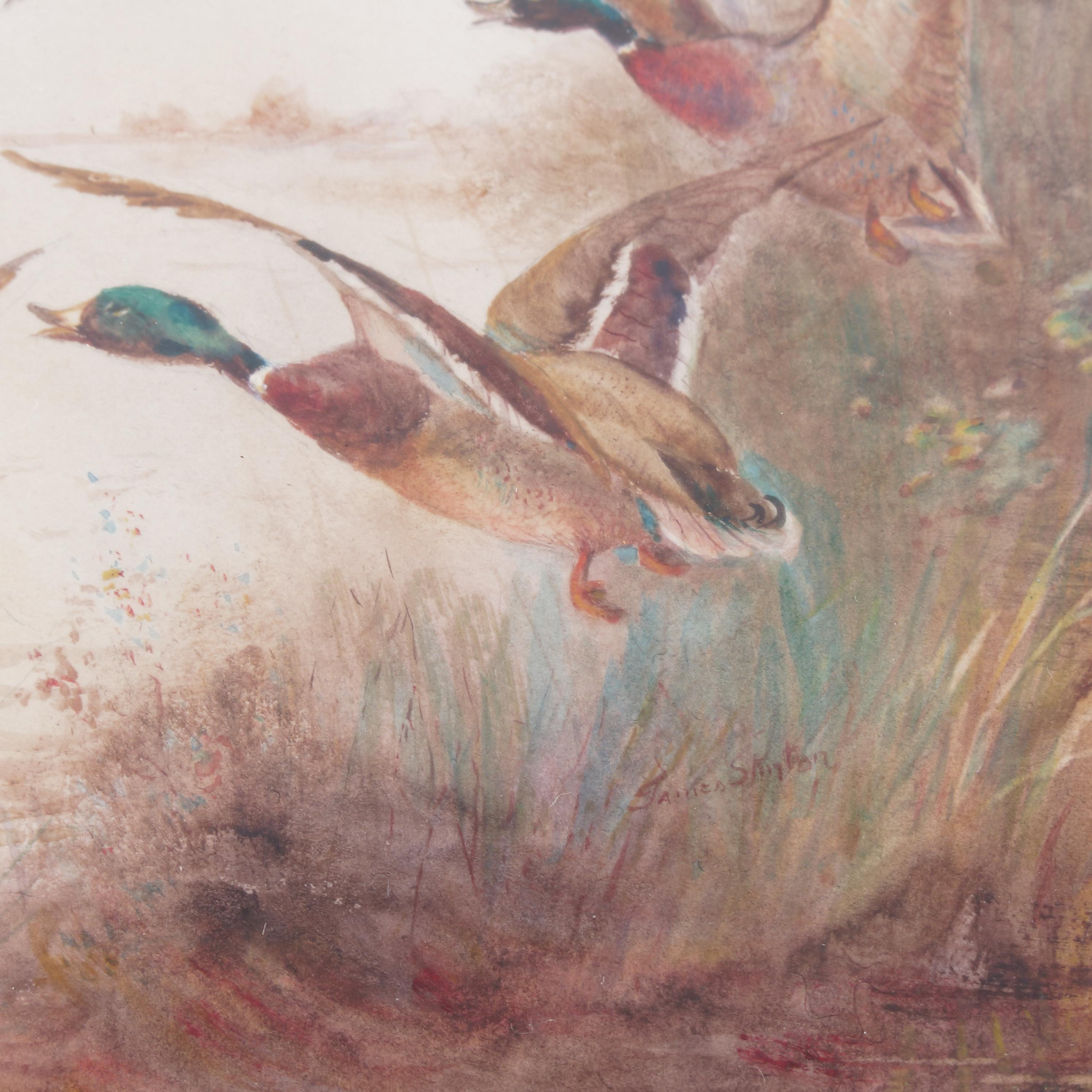 James Stinton, watercolour, mallard ducks in flight, 6.75ins x 9. - Image 3 of 3