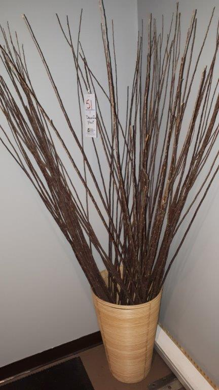 Lot 51 - Decorative plant