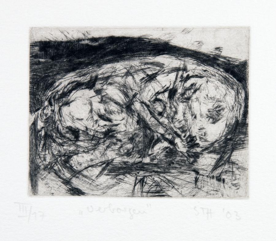 Auktionslos 1112 - Susanne Theumer - Veza Canetti. Die Schildkröten. Textauszüge mit Originalradierungen von Susanne