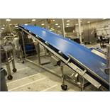 """Inclined Dough Delivery Conveyor, 53"""" X 24' 