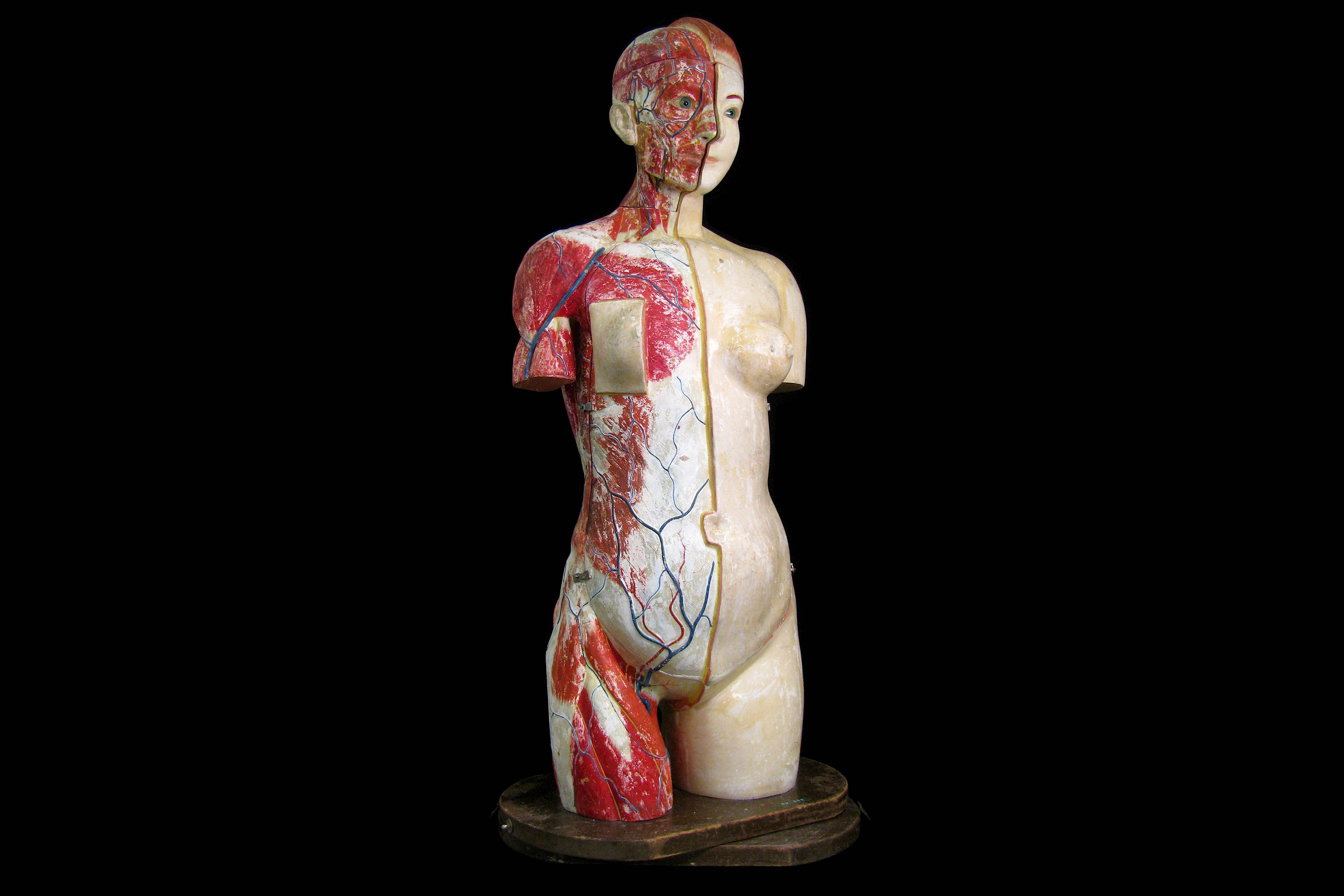 A FINE 1930'S JAPANESE LIFE-SIZE ANATOMICAL MODEL TORSO OF THE FEMALE FIGURE PRODUCED IN 1934 BY THE - Image 3 of 9