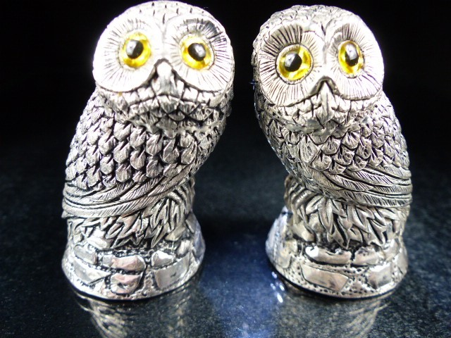 Pair of condiments in the form of owls