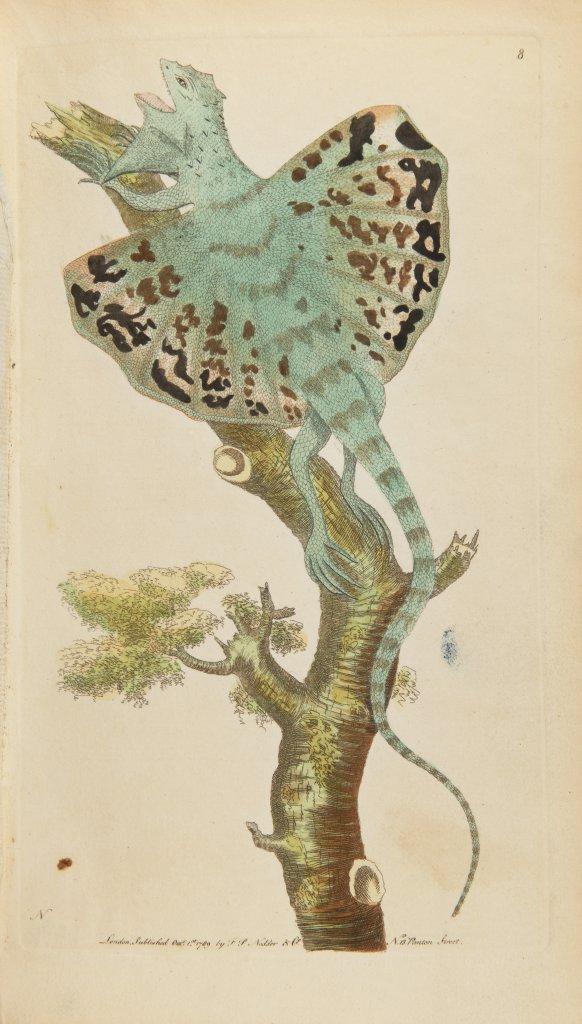 GEORGE SHAW 1751 - 1813: VIVARIUM NATURAE OR THE NATURALIST'S MISCELLANY. VOL. I-III 1790 United - Image 3 of 9