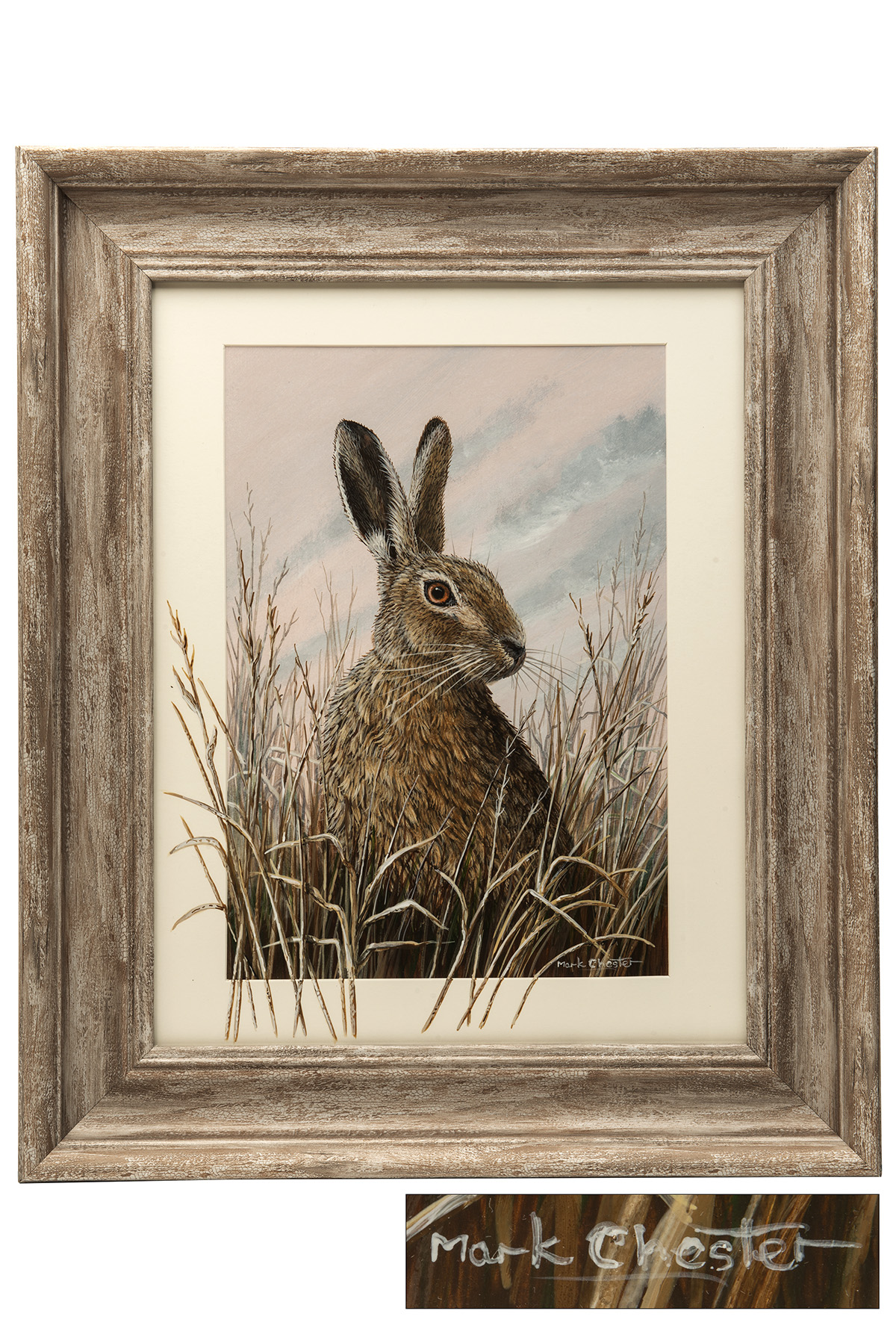 Lot 53 - MARK CHESTER (F.W.A.S.) 'ALERT HARE' an original painting signed by the artist, showing an alert