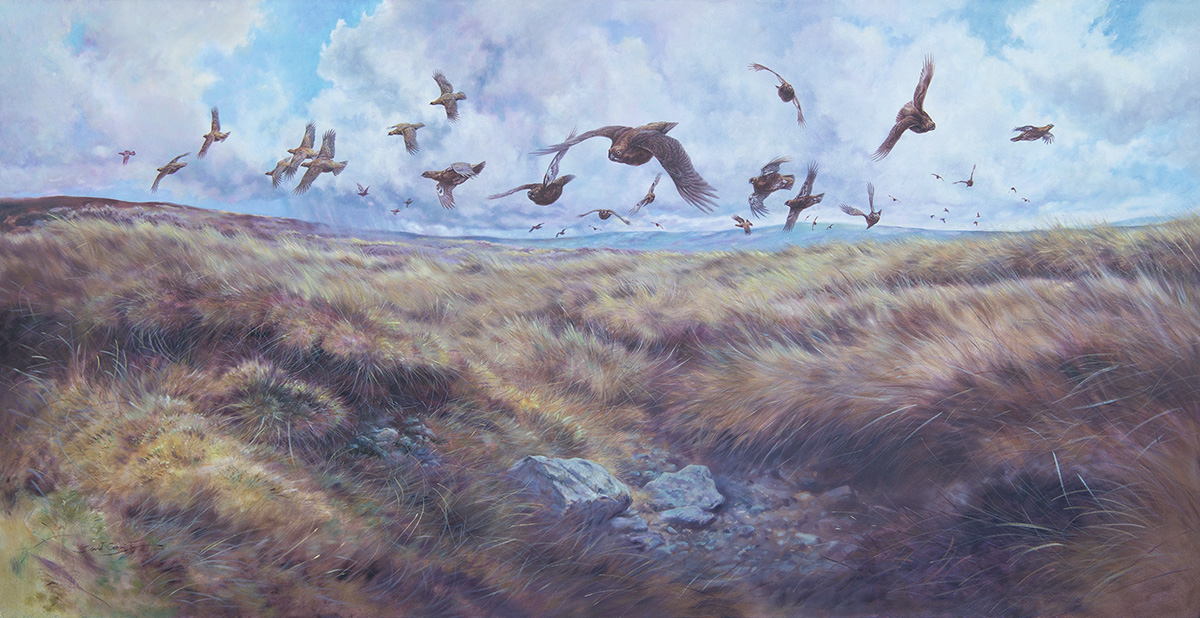 Lot 50 - DAVID CEMMICK A LARGE ORIGINAL OIL ON CANVAS OF A COVEY OF LOW FLYING GROUSE OVER HEATHER, signed by
