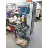 Toolex pedestal drill press, mod. DP-30, ser. no. 1146007 (1999), 12-speed c/w 4 in. machine vice(