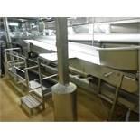 approx. 20 in. x 15' s/s frame belt conveyor c/w flat plastic belt, (chiller #3 exit conveyor) (
