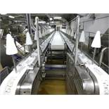 double-sided s/s cone cut-up & deboning  line, approx. 40 ft. long, 20 in. cone centers, variable