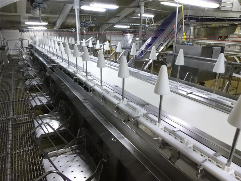 Lot 1108 - double-sided s/s cone cut-up & deboning  line, approx. 40 ft. long, 20 in. cone centers, variable