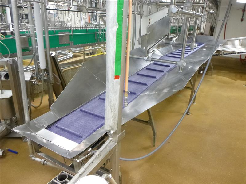 approx. 16 in. x 20 ft. s/s frame trussing belt conveyor, c/w cleated plastic belt, 1/2 h.p.