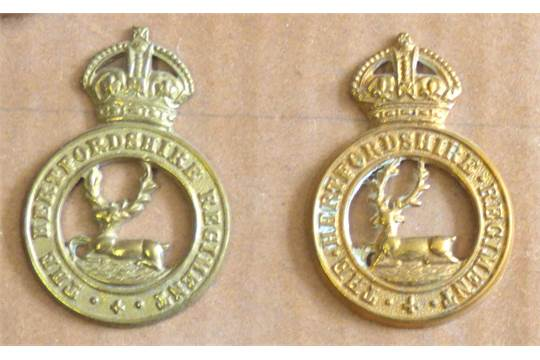 British East Anglian Infantry Regiments Cap badge and button