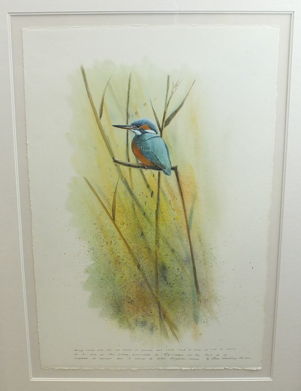 Lot 132 - •Robin Armstrong (20th century) KINGFISHER AMONGST REEDS Signed watercolour, inscribed and dated