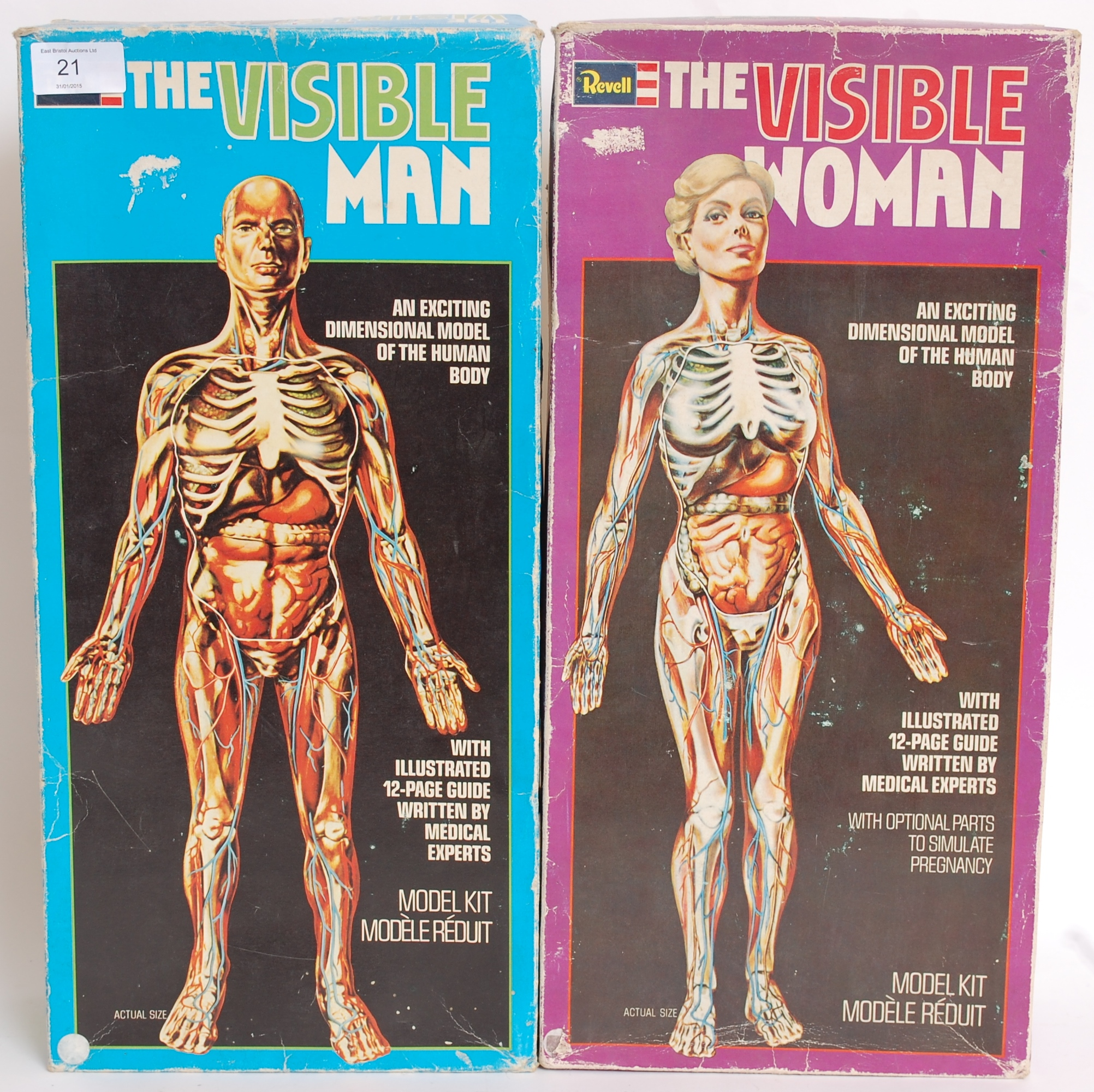 Two Revell model kits - Invisible Man & Invisible Woman, unmade, in ...