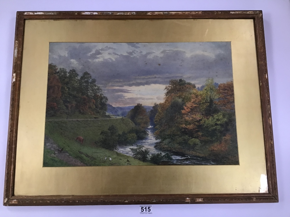 Lot 515 - A FRAMED AND GLAZED WATERCOLOUR OF A WOODLAND SCENE SIGNED W ROBINSON 58CM BY 76CM