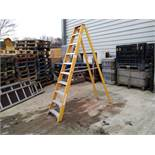 Wingback Aluminum 10 Rung Step Ladder