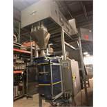 Vegatronic 1000 VFFS Machine