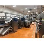Fritsch Laminator 3000 dough line,