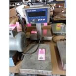 Mettler Toledo model IND226 / BBA226 platform scale. 10lb capacity, .002lb resolution.