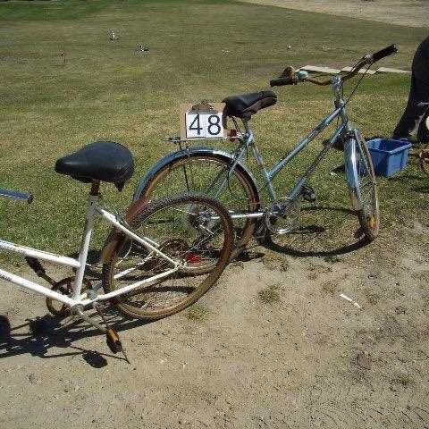 2 ladies bikes 1 blue & white, 1 Silver