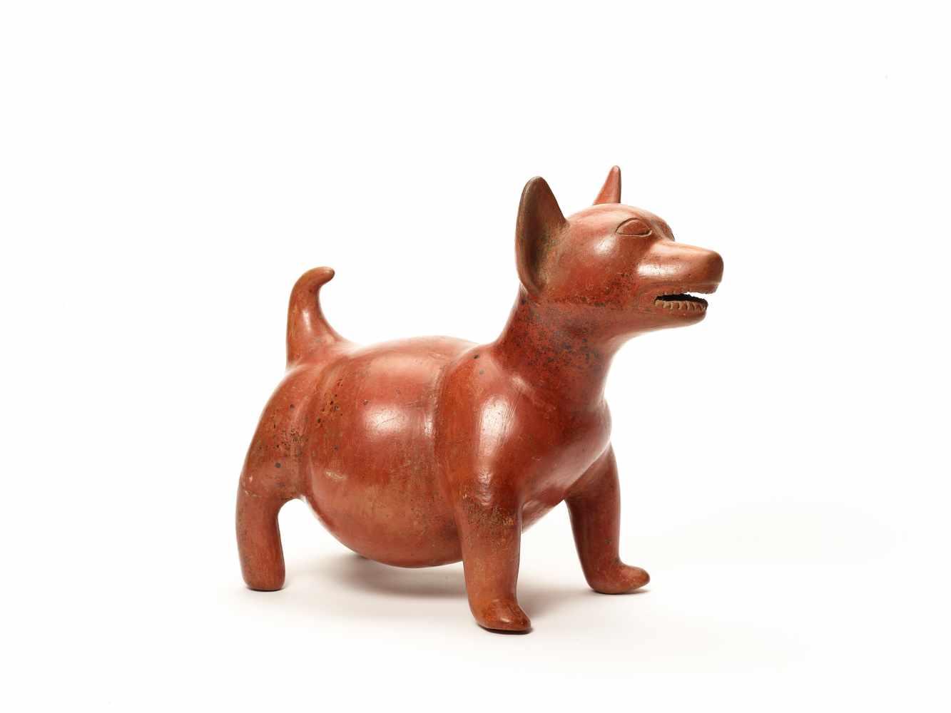 DOG FIGURE – COLIMA, MEXICO, C. 100 BC - 250 ADFired clayColima, Mexico, c. 100 BC - 250 - Image 4 of 4