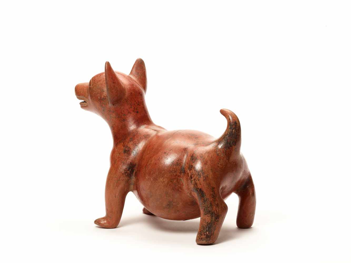 DOG FIGURE – COLIMA, MEXICO, C. 100 BC - 250 ADFired clayColima, Mexico, c. 100 BC - 250 - Image 3 of 4