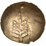 Catti Tree. c.AD 1-20? Celtic gold stater. 17-19mm. 5.41g.