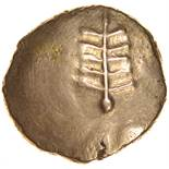 Anted Tree. ANTEĐ RIGV Type. c.AD20-43? Celtic gold stater. 17mm. 5.35g.