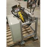 """RLS Inline Flamer with 3"""" x 46"""" conveyor Natural Gas with Control Panel 2 Flaming Heads with guards"""