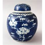 A 19TH CENTURY CHINESE BLUE & WHITE PORCELAIN PRUNUS GINGER JAR & COVER, with prunus decoration,