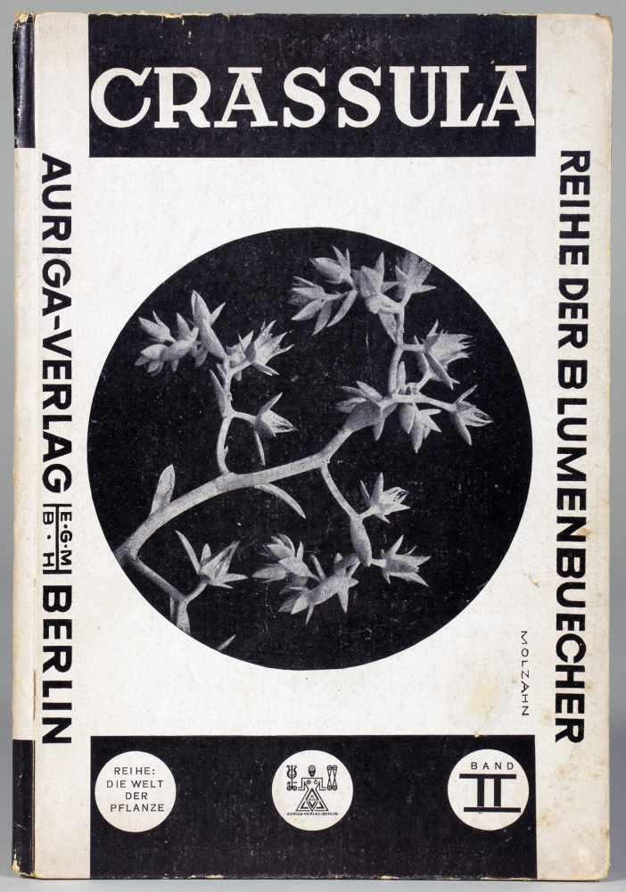Johannes Molzahn - Die Welt der Pflanze. Herausgegeben von Ernst Fuhrmann. Band II: Crassula.