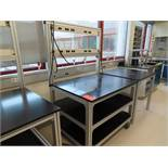 Lot of (12) rolling lab tables, no drawers, located in B wing, 4th floor, room 447A