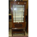 An early-20th century display cabinet, the rectangular top above two glazed sides and door, on