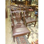 Five mahogany Chippendale-style dining chairs, (5).