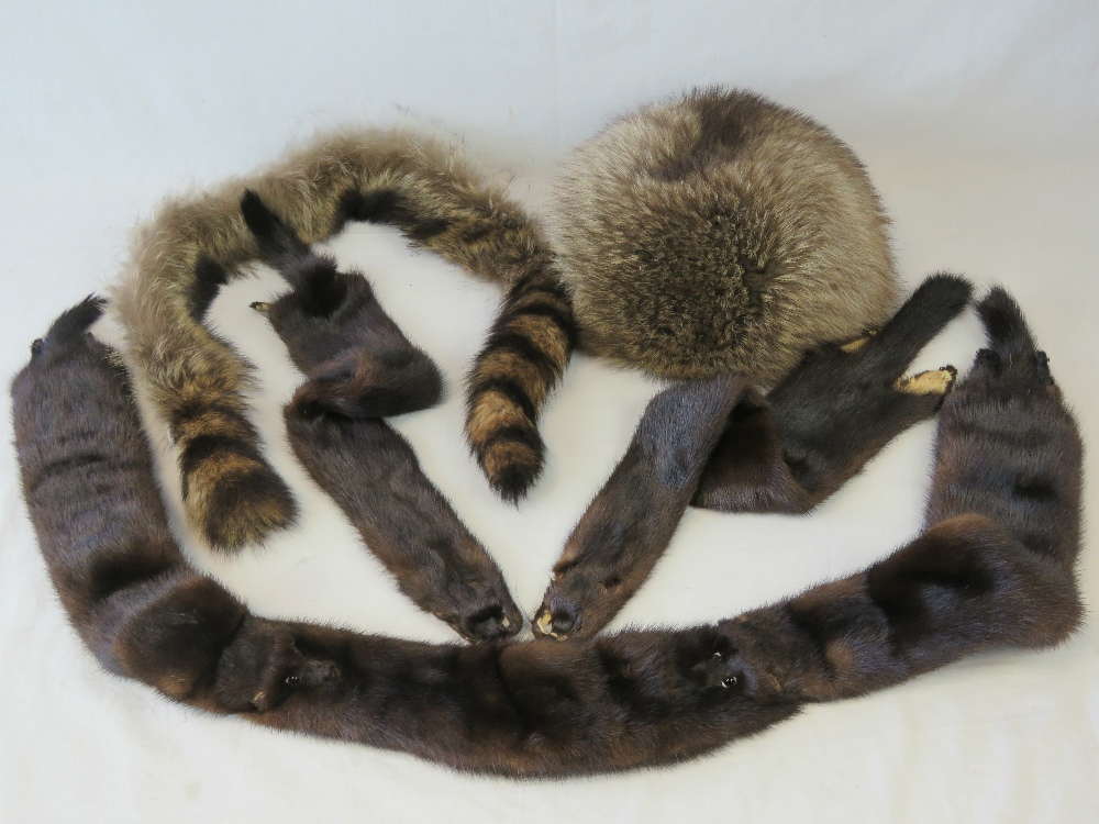 Vintage furs; a raccoon fur stole, two o