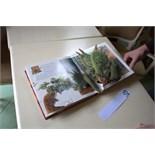 Dinosaurs Babies. Pop-up book