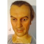 Male wax head