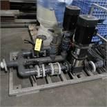 LOT: (2) SS Skid Mounted Grundfos Pumps, MDL A96523173P114190774 w/5 HP Motors