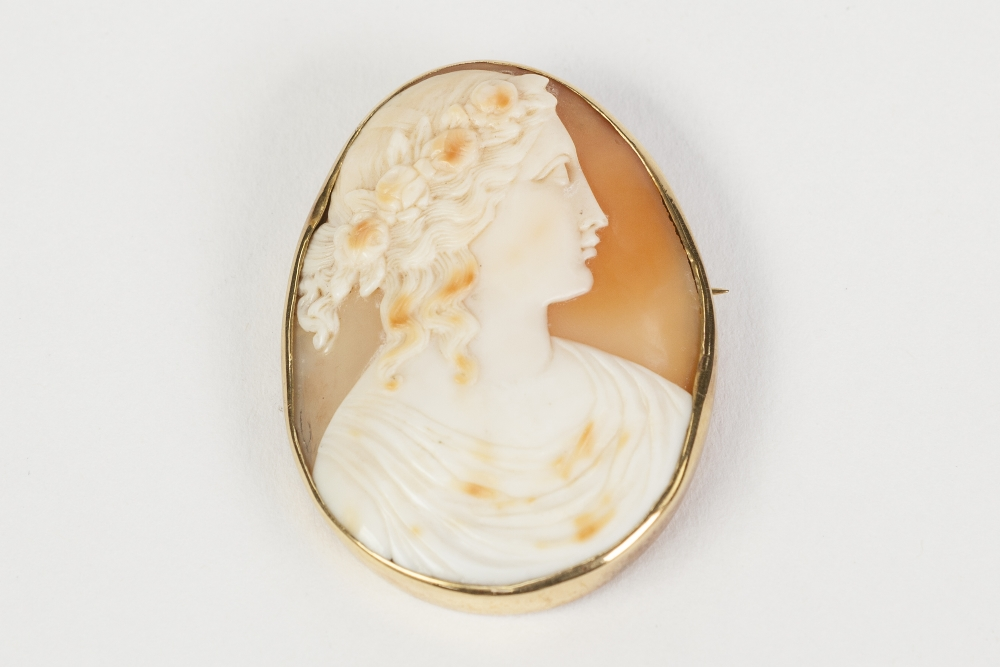 9ct GOLD MOUNTED CARVED SHELL CAMEO OVAL BROOCH of a classical female bust