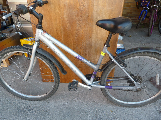 Lot 1 - Raleigh Free Ride Mountain Bike