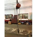 CM 1 Ton Electric Hoist