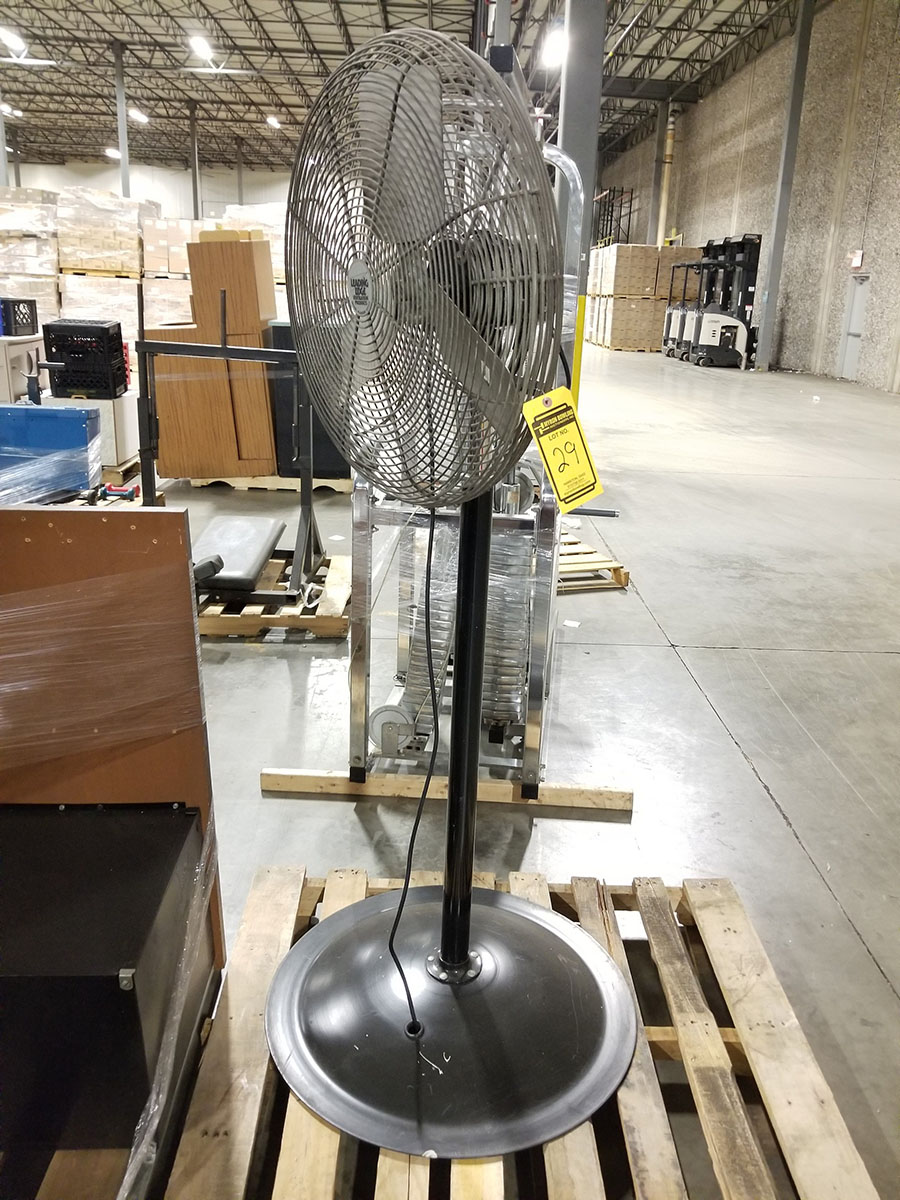 (4-6) ASSORTED PEDESTAL FANS – METAL & PLASTIC – 12'' TO 24'' - Image 8 of 9