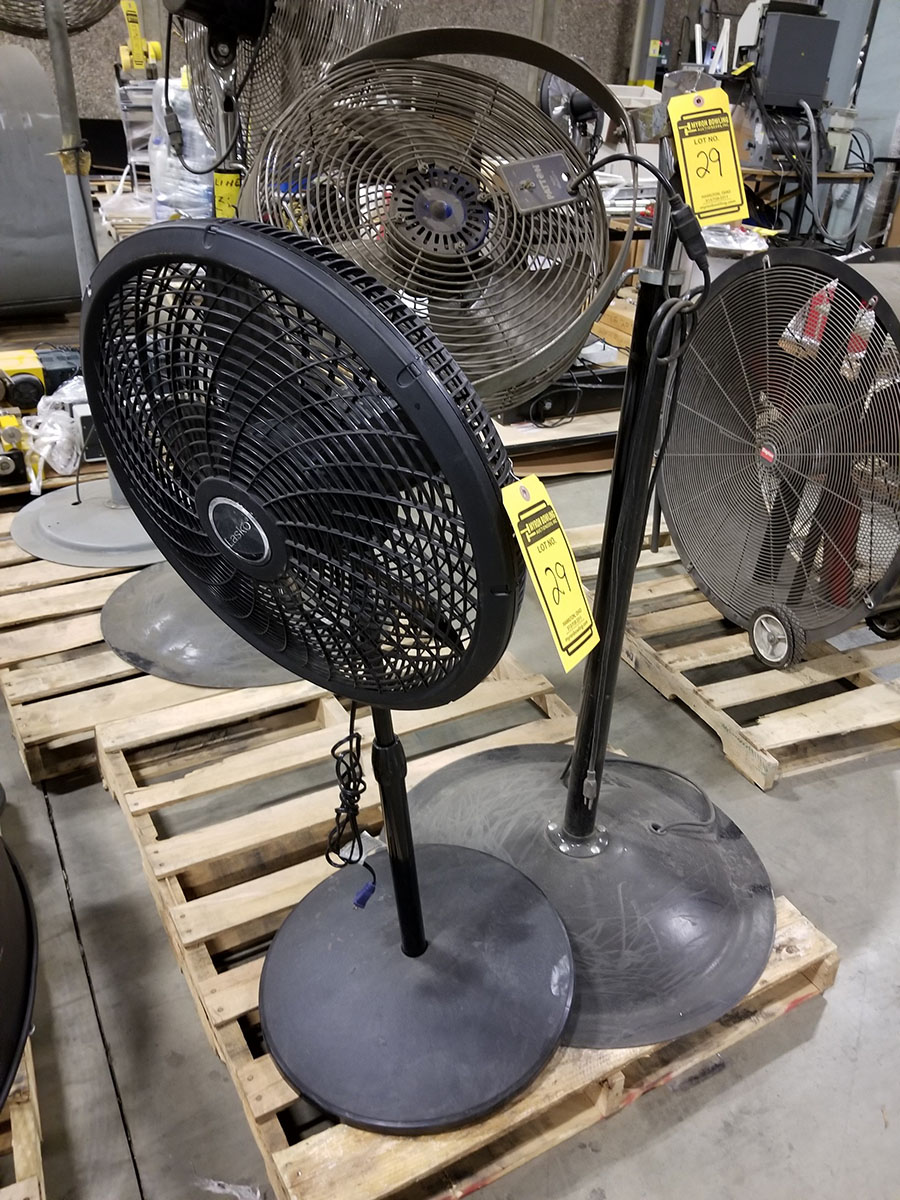 (4-6) ASSORTED PEDESTAL FANS – METAL & PLASTIC – 12'' TO 24'' - Image 4 of 9