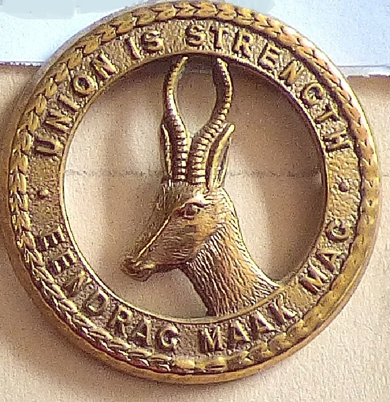 Lot 550 - South Africa - South African Infantry (smaller) Brass