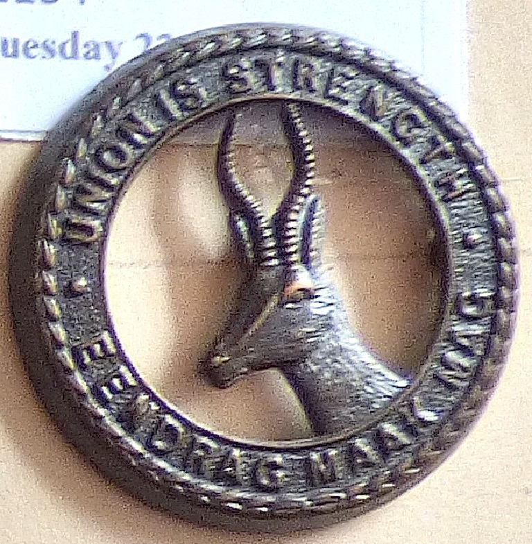 Lot 551 - South Africa - South African Infantry (smaller) Bronze