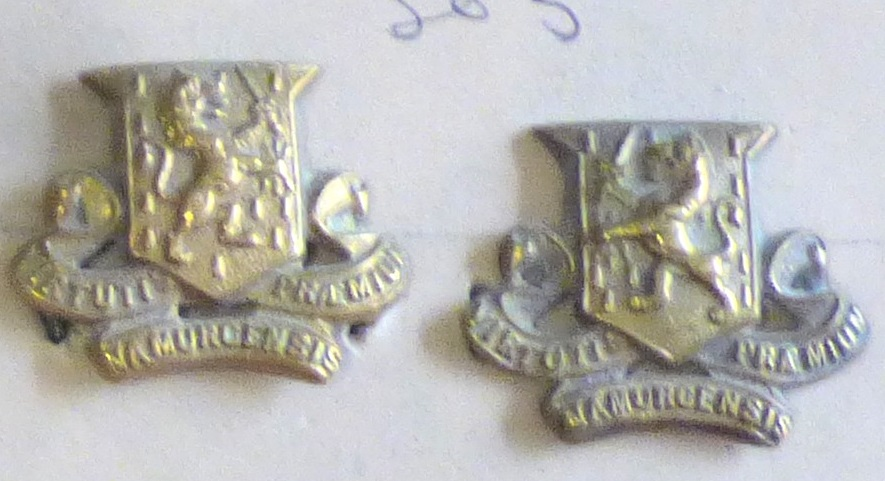 Lot 503 - British Boer War to WWI Royal Irish Regiment Officers Collar badges, facing pair (Brass, lugs)