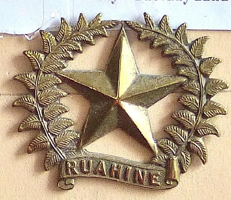 Lot 534 - New Zealand - 17th (Ruahine) regiment Gilding Metal